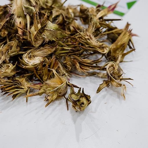 hoa atiso kho
